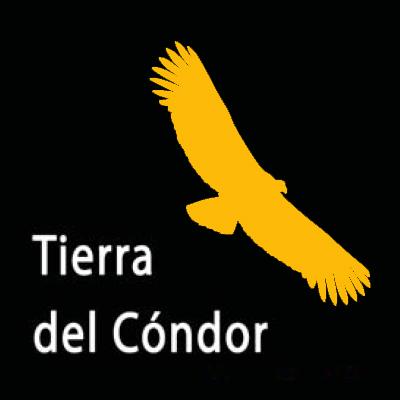 LogoTDC2.jpg